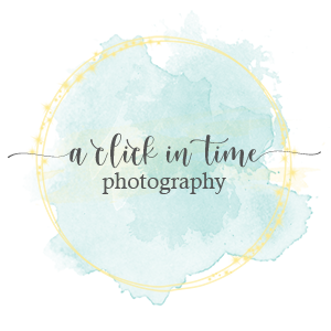 A Click in Time Photography floor plan in Dinwiddie Richmond