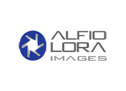 Alfio Lora Images Corp. floor plan Land O' Lakes