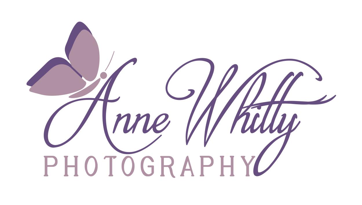 Anne Whitty Photography floor plan in Acton Boston Cambridge Framingham Lexington Natick Newton Sudbury Wayland Wellesley Weston