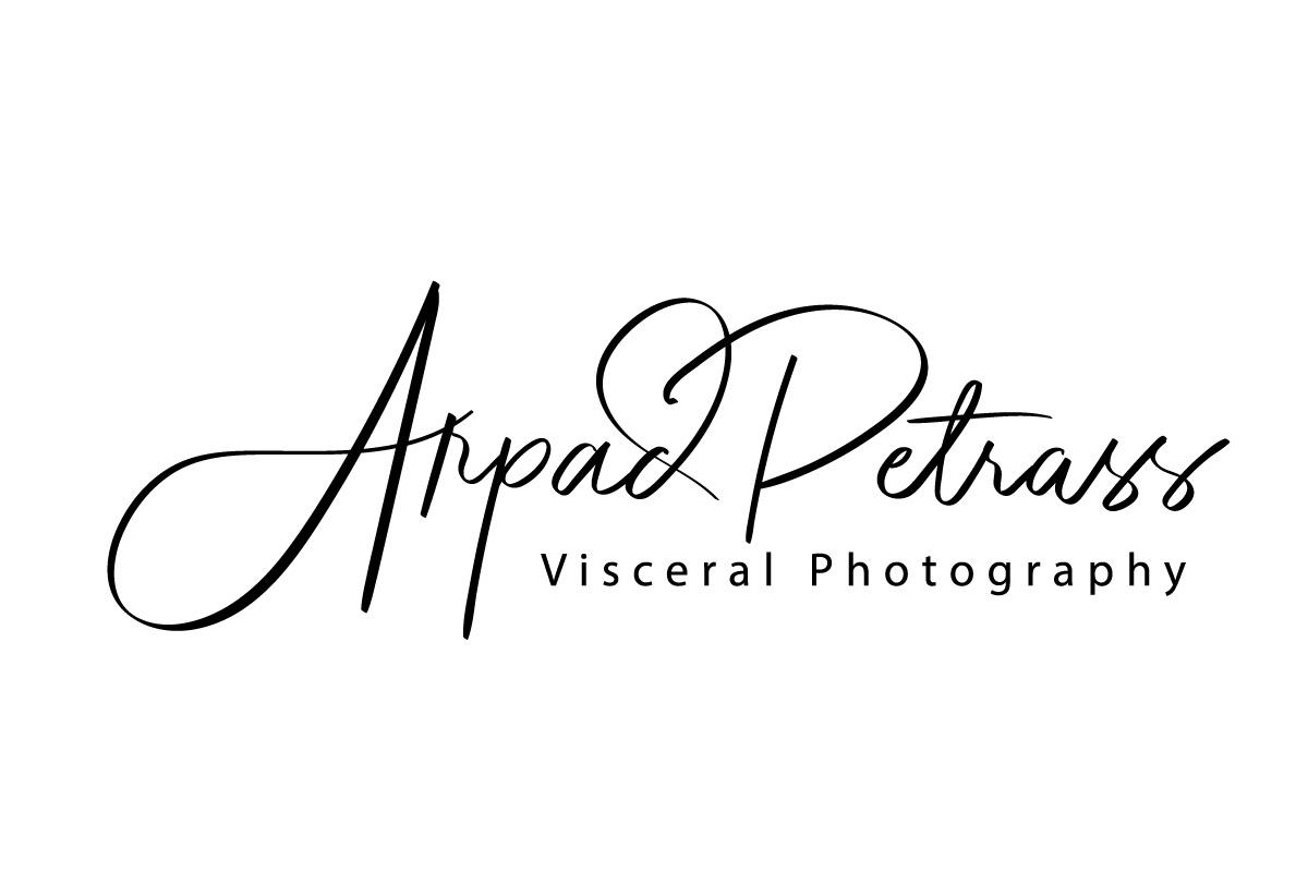 Arpad Petrass Visceral Photography floor plan in Bakersfield