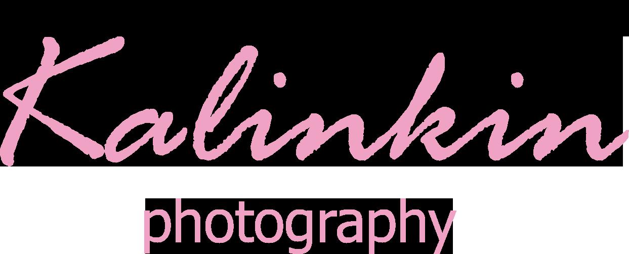 Kalinkin Photography floor plan in Brevard Charleston Greenville