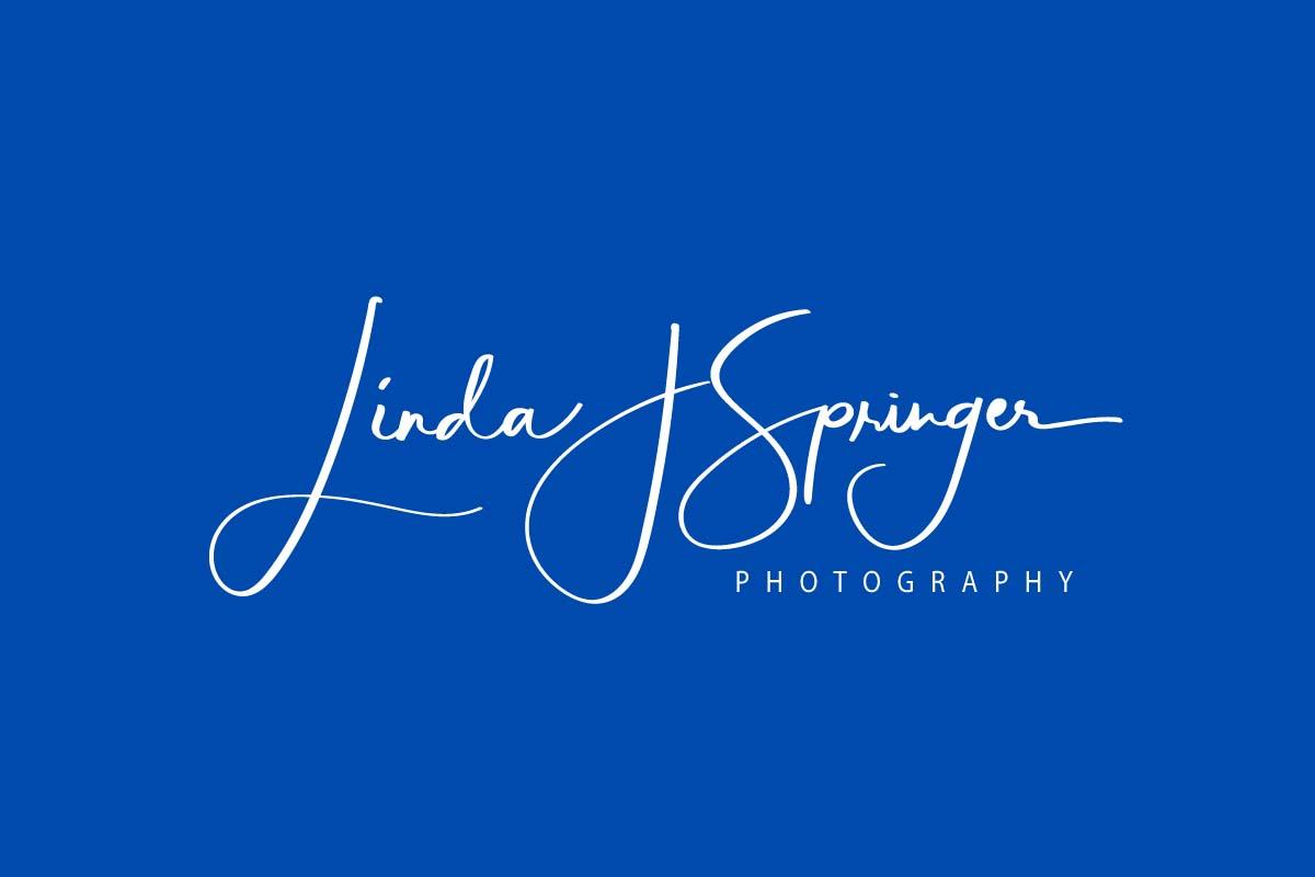 Linda J Springer Photography floor plan in Charlotte Milwaukee
