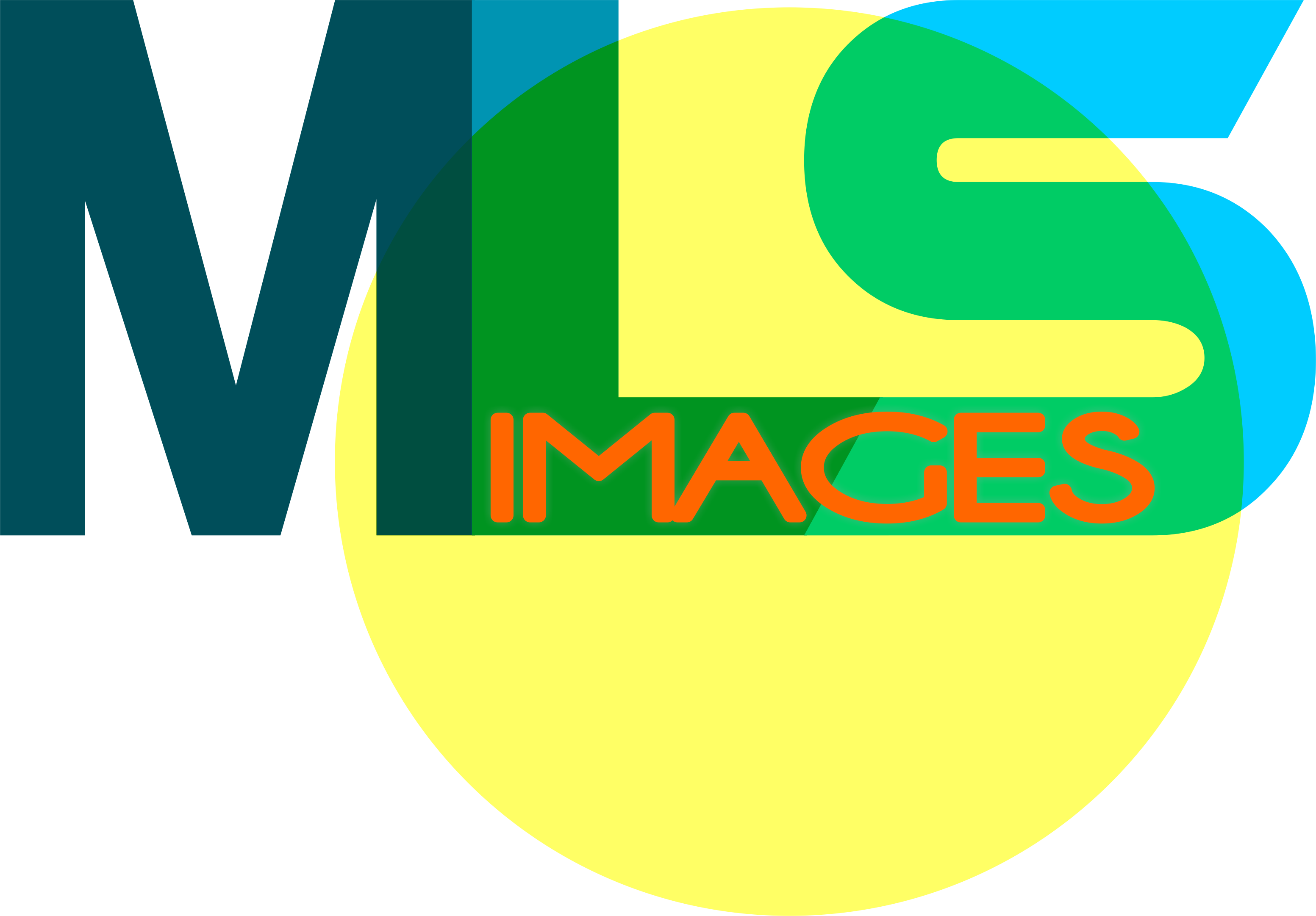 MLS Images floor plan Dallas