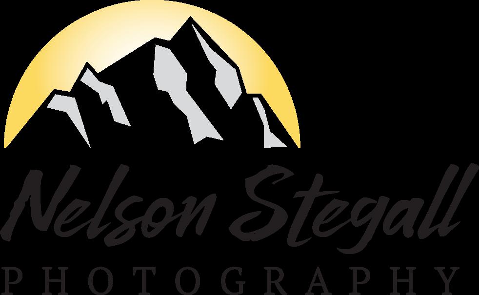 Nelson Stegall Photography floor plan in Charlotte Gastonia