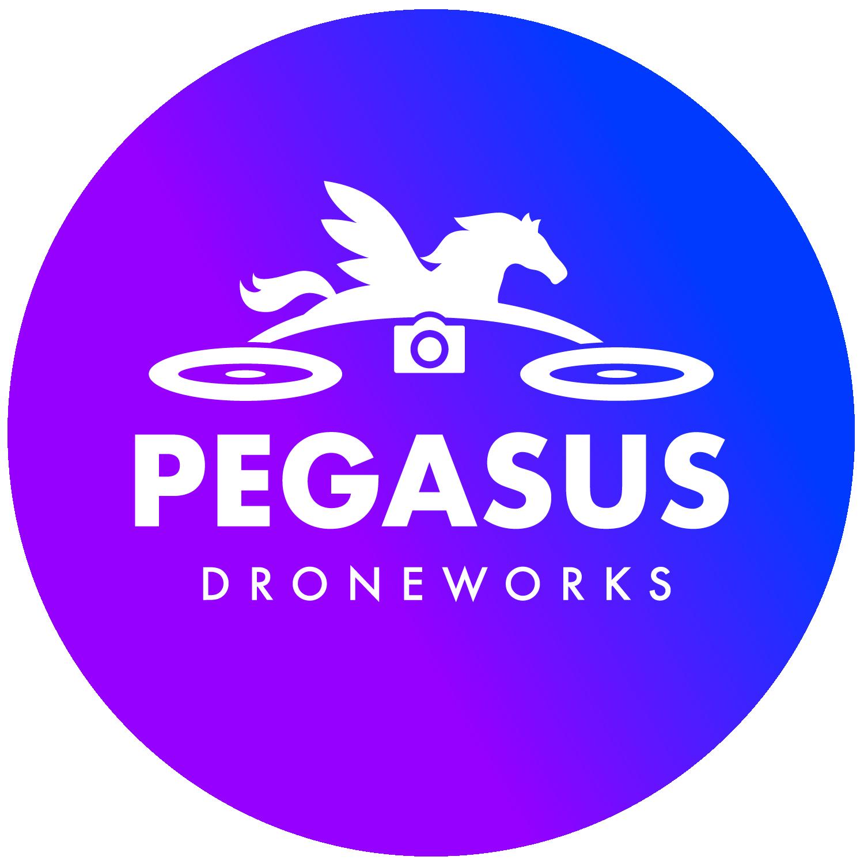 Pegasus Droneworks, LLC floor plan in Columbus