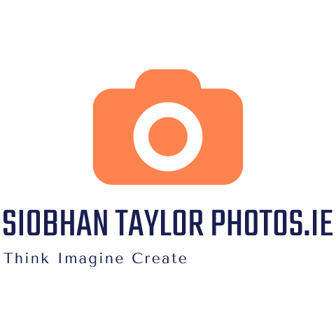 Siobhan Taylor Photos floor plan in Dublin