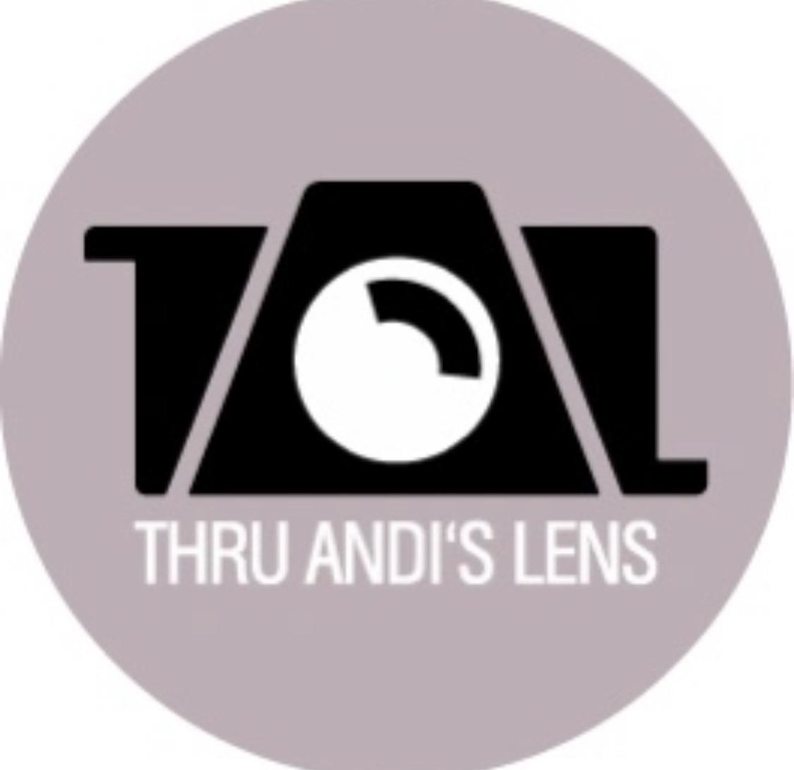 Thru Andi's Lens floor plan in Portland
