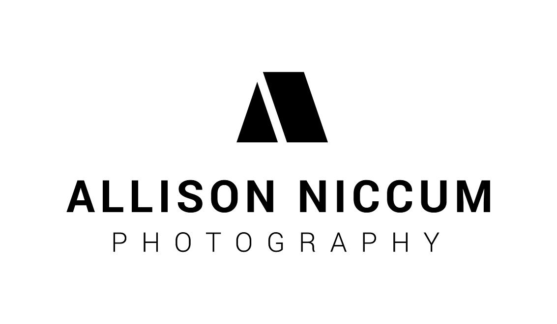 Allison Niccum Photography floor plan in Alpine