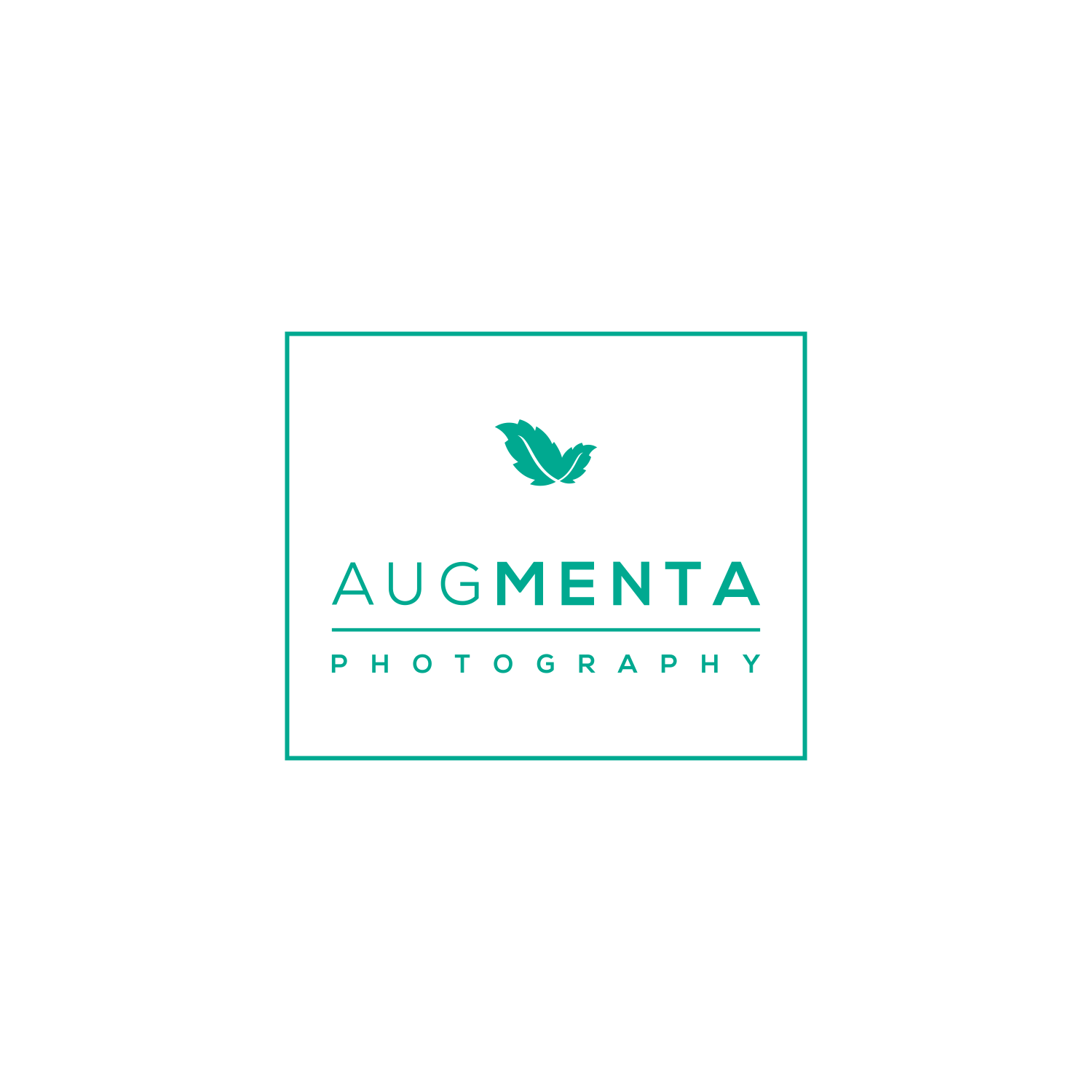 Augmenta Photography floor plan in Canberra