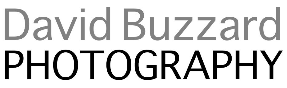 David Buzzard Photography floor plan in Dorchester Ilderton Komoka London Mount Brydges Ontario St. Thomas Strathroy