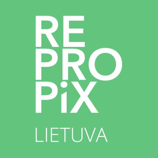 Repropix Lietuva floor plan in Kaunas Vilnius
